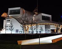 Centre Pompidou, Metz, 2010