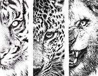 Felidae skateboard graphics
