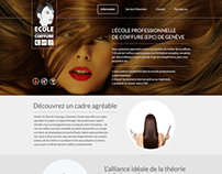 Saloon website design