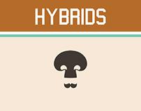 Logo hybrids - 2013