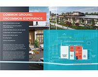 Common Ground Brand Extension
