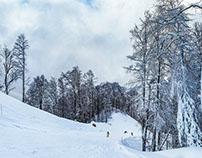 Ski resort Rosa Khutor in the Krasnodar region .