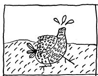 Mientras se muere una gallina