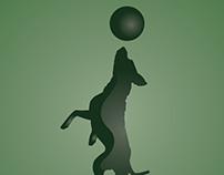 עומרי אילוף כלבים