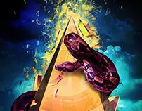 Snake Prism Poster - 2014