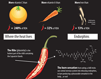 Infographics: Spice up Your Life
