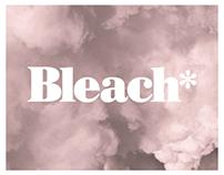 Bleach* Festival 2013