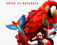 FESTIVAL DE BONITO 2013