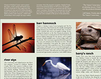 Nature Conservancy Brochure