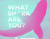 Spotify x Discovery Shark Week