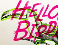 Helloooo Birdie