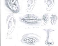Eye Nose Lips Ears