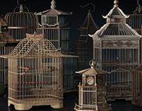 AUDI Cage 2