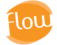 Branding - FLOW Art Jewelry