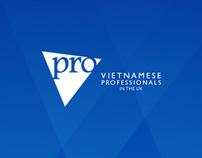 VietPro identity
