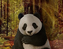 Transported panda in the forest