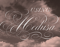 Using Medusa Script