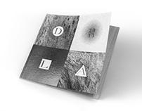 DLA2013
