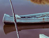 Water, sky & birds in Manglecito