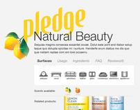 Pledge.com Redesign exploration