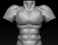 30 minute Male Torso Build