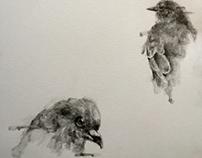 practice -bird-