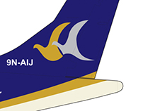 Buddha Air - ATR, Aircraft Branding