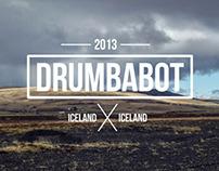 Drumbabot - Iceland petrified wood