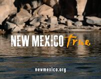 New Mexico - True: Couple