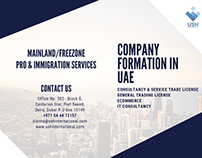 COMPANY SET-UP IN UAE