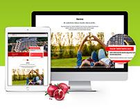 Narova Etap 4 Web Site