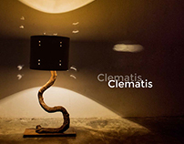 Clematis- An upcycled furniture