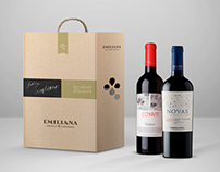 Emiliana Picnic box