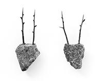 石の動物 - stone animals