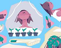 Plants & Gardening Illustrations