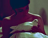 OVERTURE / experimental film