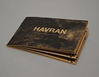 HAVRAN / raven – E. A. Poe