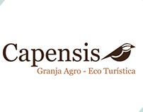 Identidad Corporativa Capensis