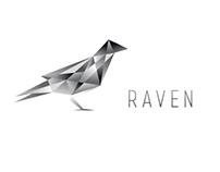 Polygonal Raven