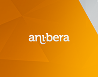 Anibera Corporate Website, 2015