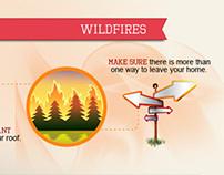 Tremendous Forces of Nature Infographic