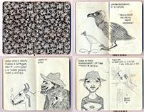 Cadernos de Viagem - Cicloamazonia. 2012.
