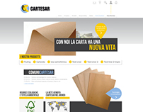 Cartesar - web design