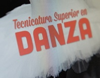 Tecnicatura superior en danza website
