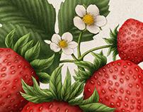 varie frutta
