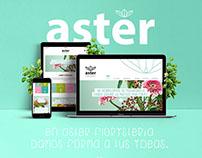 ASTER web responsive design