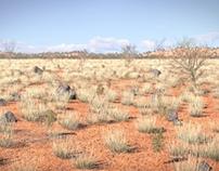 Nature Academy - Desert