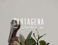 - cartagena -