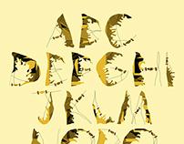 Inspirational Font Design