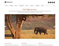 Responsive, Wordpress Minimalistic Portfolio Theme